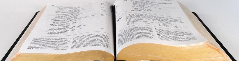 Gratis Bijbelstudies & brochures
